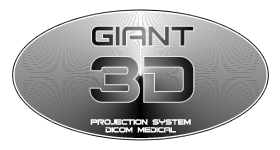 Giant 3D Projection System